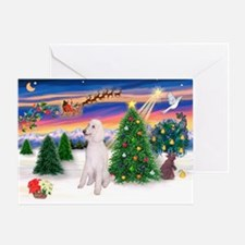 TakeOff/Poodle (STW) Greeting Card