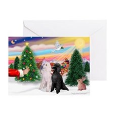 Treat / 2 Poodles (ST) Greeting Card