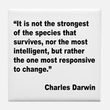 Darwin Survival Quote Tile Coaster