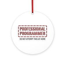 Professional Programmer Ornament (Round)