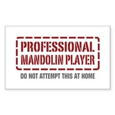 Professional Mandolin Player Rectangle Decal
