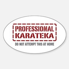 Professional Karateka Oval Decal