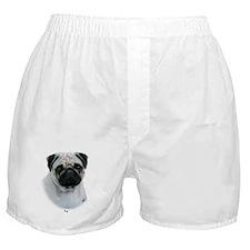 Pug 9Y383D-294 Boxer Shorts