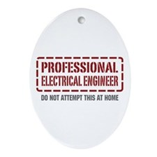 Professional Electrical Engineer Oval Ornament