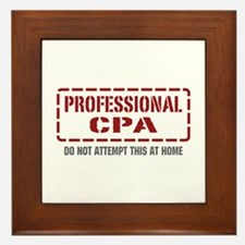 Professional CPA Framed Tile
