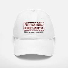 Professional Budget Analyst Baseball Baseball Cap