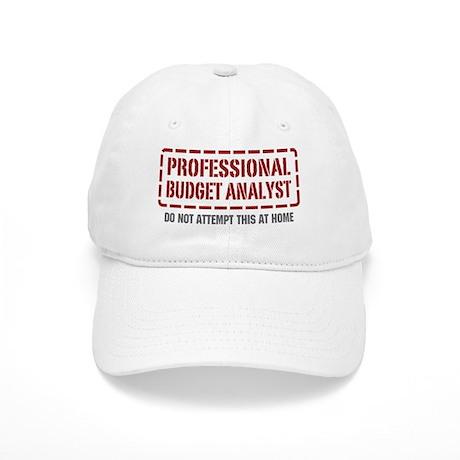 Professional Budget Analyst Cap