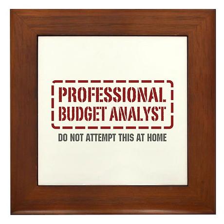 Professional Budget Analyst Framed Tile