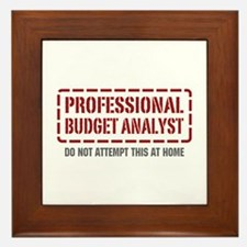 Professional Budget Analyst Framed Tile