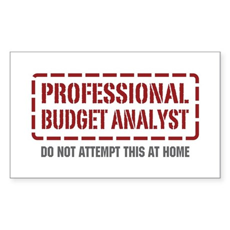 Professional Budget Analyst Rectangle Sticker