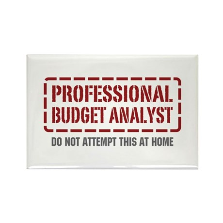 Professional Budget Analyst Rectangle Magnet