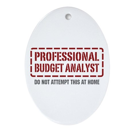 Professional Budget Analyst Oval Ornament