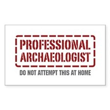 Professional Archaeologist Rectangle Decal