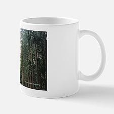 Yosemite Falls Mug