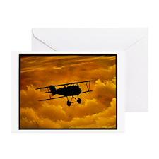 """""""Albatross"""" Greeting Cards (Pk of 10)"""