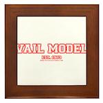 Vail Model Framed Tile