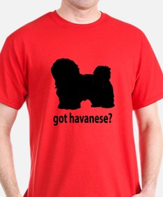 Got Havanese? T-Shirt