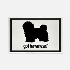 Got Havanese? Rectangle Magnet