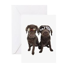 Cool Chocolate Labs Greeting Card