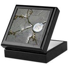 Beach Photo Keepsake Box