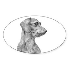 Wirehaired Dachshund 1 Oval Decal