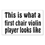 Violin Rectangle Sticker