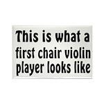 Violin Rectangle Magnet (100 pack)