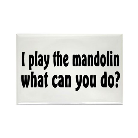 Mandolin Rectangle Magnet (100 pack)