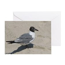 Jersey Shore Seagull Greeting Card