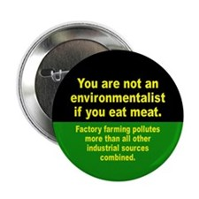 "ENVIRONMENTALIST 2.25"" Button"