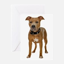 Pit Bull Greeting Card