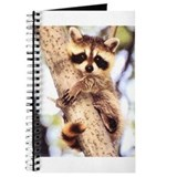 Raccoon Journals & Spiral Notebooks