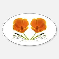 Golden Poppy Flower Oval Decal