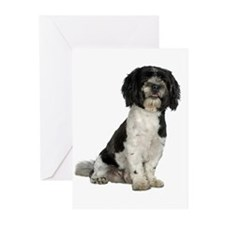 Havanese Greeting Cards (Pk of 10)