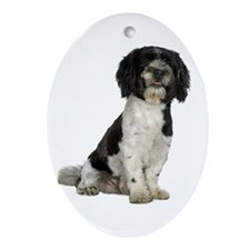 Havanese Oval Ornament