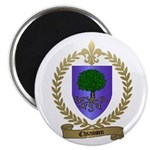 CHIASSON Family Crest Magnet