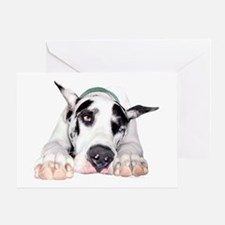 Great Dane Shy Harlequin Greeting Card