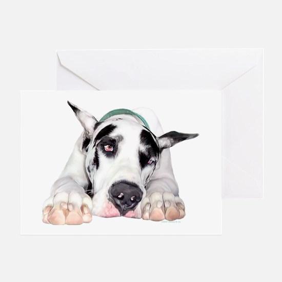 Great Dane Shy Harlequin Greeting Card