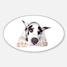 Great Dane Shy Harlequin Oval Decal