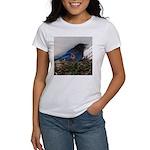 Baby Steller's Jays Women's T-Shirt