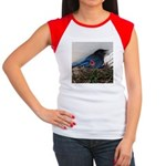 Baby Steller's Jays Women's Cap Sleeve T-Shirt