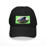 Baby Steller's Jays Black Cap