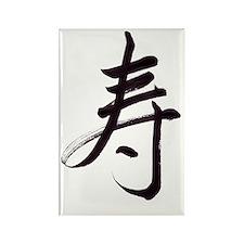 Congratulations kanji Rectangle Magnet