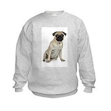Fawn Pug Kids Sweatshirt