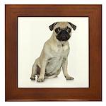 Fawn Pug Framed Tile