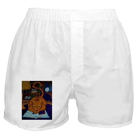 The Wizard's Cat Boxer Shorts