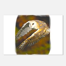 Owl flight Postcards (Package of 8)