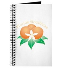 Florida Goodness Journal