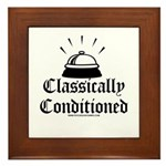 Classically Conditioned Framed Tile