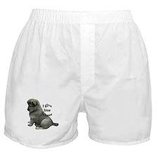 Eurasier puppy kisses Boxer Shorts